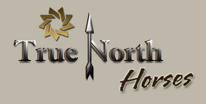 True North Horses
